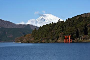 Tour de 2 días al Monte Fuji y a Hakone y viaje de regreso en un tren...