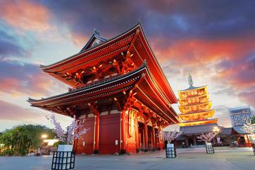 Tour mattutino di Tokyo: santuario
