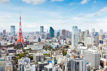 Visita a la Torre de Tokio, ceremonia del té y crucero por el río...