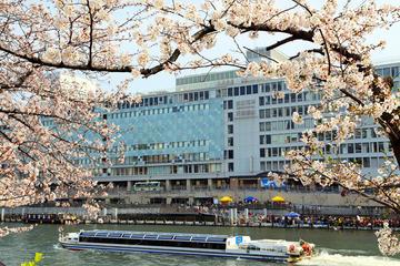 Visita a pie por la tarde a Osaka con crucero por el río de Osaka