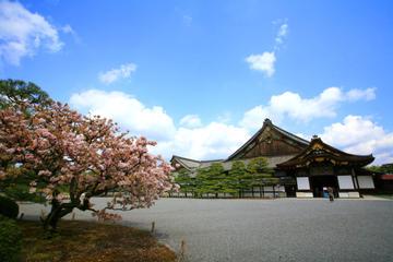 Visite de la ville de Kyoto : le Pavillon d'Or, le château de Nijo...