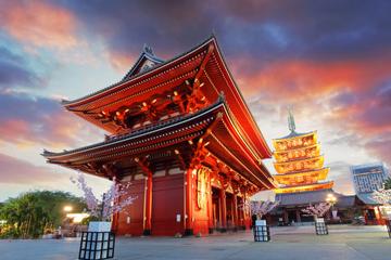 Visite de Tokyo en matinée: temple de Meiji, temple de Senso-ji et...