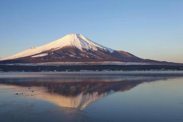 Visite du Mont Fuji et du lac Ashi en première classe (TGV), au...