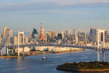 Visite panoramique de Tokyo en une journée - Temple de Meiji, temple...