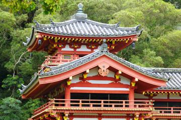 Visite à pied guidée d'Uji avec cérémonie du thé au départ de Kyoto