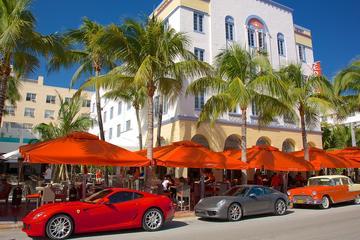 Recorrido por la ciudad de Miami con crucero por la Bahía de Biscayne...