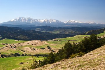 Dagtrip naar Zakopane en de berg Tatra vanuit Krakau