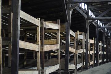 Tour di mezza giornata al museo di Auschwitz-Birkenau da Cracovia