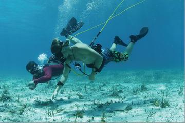 Feestcruise vanuit Punta Cana met Hookah duiken en snorkelen
