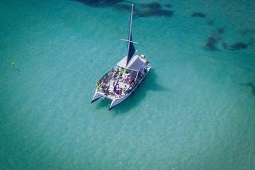Punta Cana  Catamaran Party with Snorkeling and Parasailing