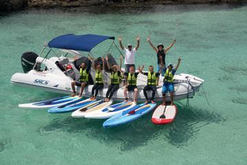 La Isla de Lobos: experiencia de surf de remo y de buceo desde...
