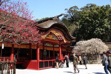 Fukuoka full day highlight private walking tour