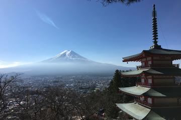 Private Day Tour: Mt. Fuji Highlights...