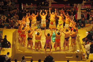Sumo Wrestling Tournament Experience...