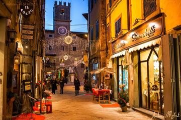 Private tour from Florence to Cortona and Arezzo