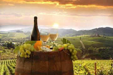 Private tour from Livorno port to Chianti wine region