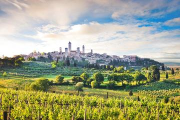 Private tour from Livorno port to San Gimignano & Volterra