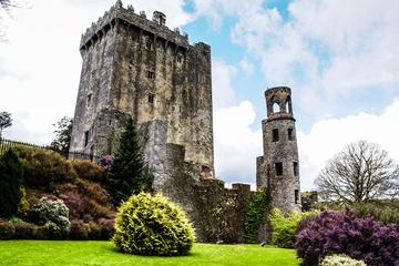 Cobh Shore Excursion: Blarney Castle, Cork City and Kinsale Private Tour