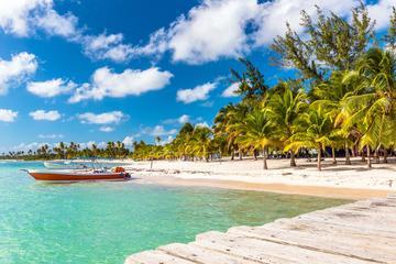 Excursion d'une journée au départ de Punta Cana: l'île de Saona en...