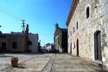 Private Santo Domingo Sightseeing Tour from Punta Cana