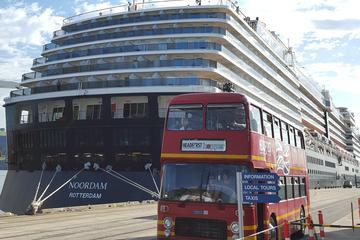 Dunedin Cruise Ships Shore Excursions