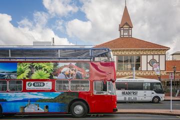 Rotorua Hop-On Hop-Off Tour