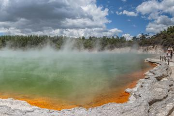 Thermal Wonderland Geyser Link Shuttle Tour from Rotorua