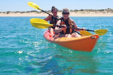 Afternoon Ningaloo Reef Kayaking and Snorkeling Tour