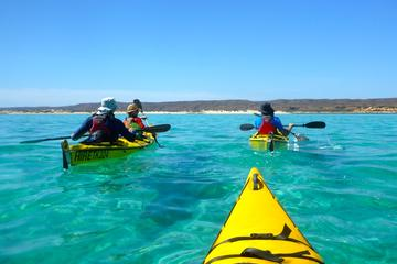 Ningaloo Reef Kayaking and Snorkeling...