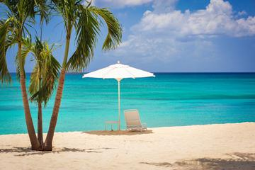 Grand Cayman Private Tour: Western...