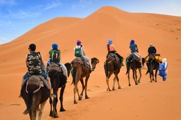 Private 4-tägige Kasbah-Tour mit Kamelritt ab Marrakesch