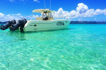 Half-Day Private Charter from St John