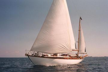 Excursión en barco por la laguna de Venecia con almuerzo típico