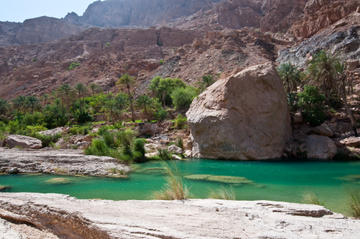 Private 4x4 Wadi Safari - An Encounter with Nature