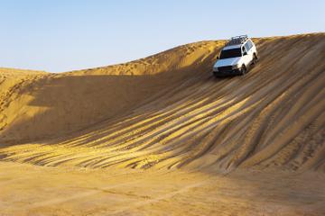 Privattur: heldagskøretur med firehjulstrækker i den arabiske ørken...