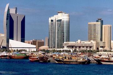 Tour panoramico della città di Dubai da Abu Dhabi