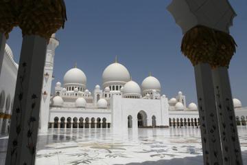Visite de la mosquée Sheikh Zayed et de l'hôpital des faucons à Abou...