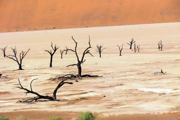Deadvlei and Sossusvlei Tour by ATV