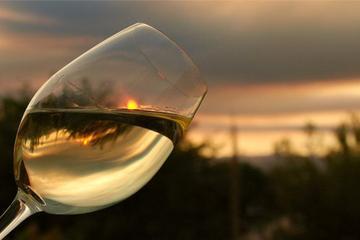 Provincia of Ascoli Piceno Wine Tasting