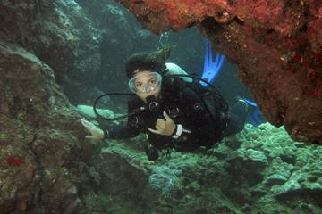 Two Tank Introductory Dive No...