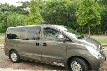 Private Singapore Arrival Transfer: Changi Airport to Hotel
