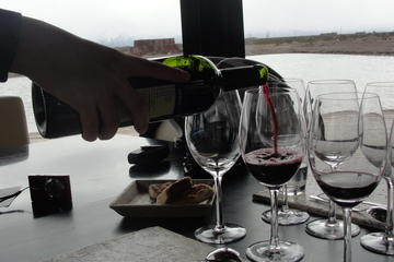 Mendoza Winery Gourmet Lunch with Wine Tasting