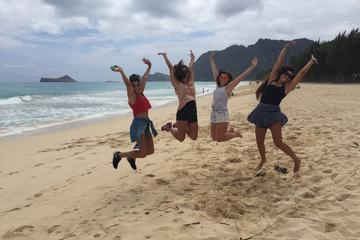 Private Oahu Circle Island Tour With...