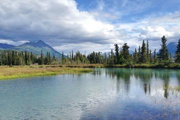 Guided Adventure Hiking in the Kenai National Wildlife Refuge