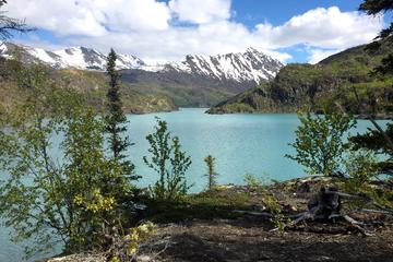 Scenic Boating and Hiking Tour in the Kenai National Wildlife Refuge