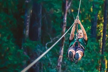 Day Trip 40-Minute Nanaimo Zipline Adventure near Nanaimo, Canada