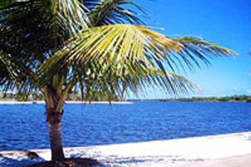 Excursión en goleta a Ilha dos Frades y Itaparica desde Salvador