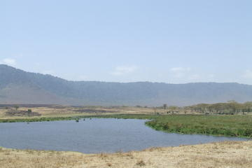 7-Day Private Tour: Lake Manyara, Serengeti, Ngorongoro and Tarangire...