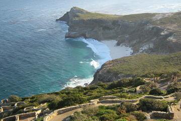 Halbinsel-Tour - Halbtägige Tour ab Kapstadt