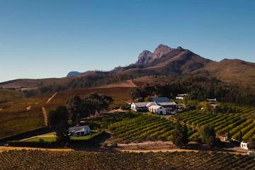 Stellenbosch, Franschoek and Paarl Winelands Tour from Cape Town